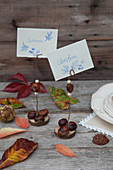 Place card holders handmade from horse chestnuts