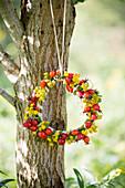 Hagebuttenkranz mit gelben Blüten am Baum hängend