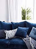 Blue upholstered sofa with pillow collection