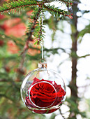 Red rose in glass Christmas-tree bauble