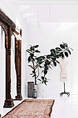 Zimmerpflanzen neben Schneiderpuppe in weißem Raum
