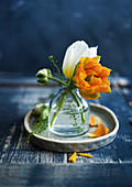 Ranunculus and tulips in vase