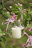 Candle in glass sphere hung from flowering cherry tree