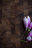 Magnolia flowers on wooden surface