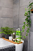 Christmas arrangement and houseplants on bathtub in bathroom with grey wall tiles