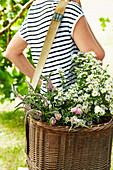 Frisch geschnittene Sommerblumen in einem Korb