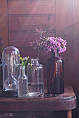 Glass cover and flowers in glass bottles