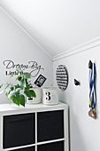 Houseplant on top of black-and-white shelving and medallions hung on wall