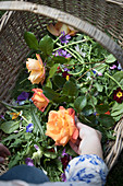 Roses, edible flowers and herbs in a wicker basket
