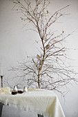 Woollen blankets and wintry accessories on table in front of small leafless tree