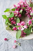Wreath of crab apple blossom on plate