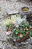 Arrangement of Gaultheria, heather, pine cones, poppy seedheads, cyclamen and silver ragweed in bowl on grave