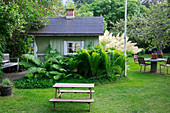 Small green summerhouse behind tall ferns in summer garden