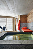 Pool in luxurious spa room with Alpine ambiance