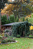 Firewood stacked against shed covered in ivy in autumnal garden