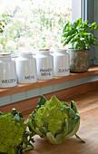 Romanesco auf Holzarbeitsplatte, Vorratsbehälter und Basilikumtopf auf Fensterbank in der Küche