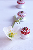 White hellebore next to red-and-white furniture knobs