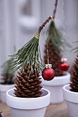 Pine cones festively decorated with hats of conifer needles and miniature baubles