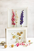 Dried flowers in white 3D frame