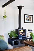 Schwarzer Kamin mit Bank und Zimmerpflanzen im Wohnzimmer
