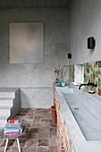 Langes Waschbecken im rustikalen Bad mit Betonwänden