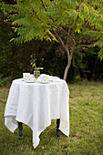 Tablecloth and coffee service on small table in garden