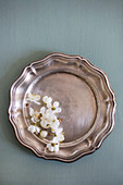 White flowers on old silver plate