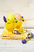 Yellow egg cups decorated for Easter with forsythia and hyacinth florets