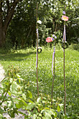 Peonies on wooden rods decorating garden