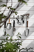 Gardening utensils on rack on white board wall