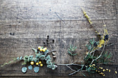 Various conifer twigs and natural materials on wooden table