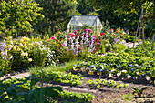 Vegetable Garden With Flowerbed And Greenhouse