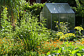 Natural Garden With Greenhouse