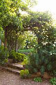 Holzspalier mit Rosen in gepflegtem Landschaftsgarten