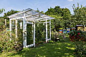 DIY greenhouse made from old windows in garden