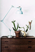 Articulated lamp, cactus and bird figure on a chest of drawers