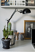 Black anglepoise lamps and cacti on desk