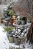 Christmas Arrangement In The Courtyard