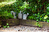 Three metal watering cans on a plank border