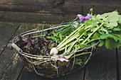Drahtkorb mit rotem Eichblattsalat, Mairübchen und Kräutern