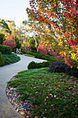 Paved path in autumn garden