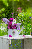 Lilac in ornamental watering can in garden
