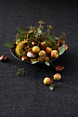 Autumnal arrangement of sweet chestnuts, sorb apples and eucalyptus in bowl