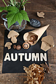 Autumnal still-life arrangement with origami mushrooms