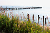 View past beach and grasses to pier on the sea shore