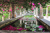 Mediterranean water basin with water lilies