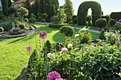 Formal garden with topiary trees and ornamental onion