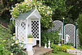 Gazebo with climbing rose 'Ghislane de Feligonde'
