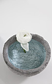 Top view of concrete-effect bowl and ranunculus