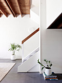 Houseplants in white living room with beamed ceiling
